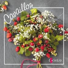 CAVALLION