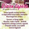 tt vision